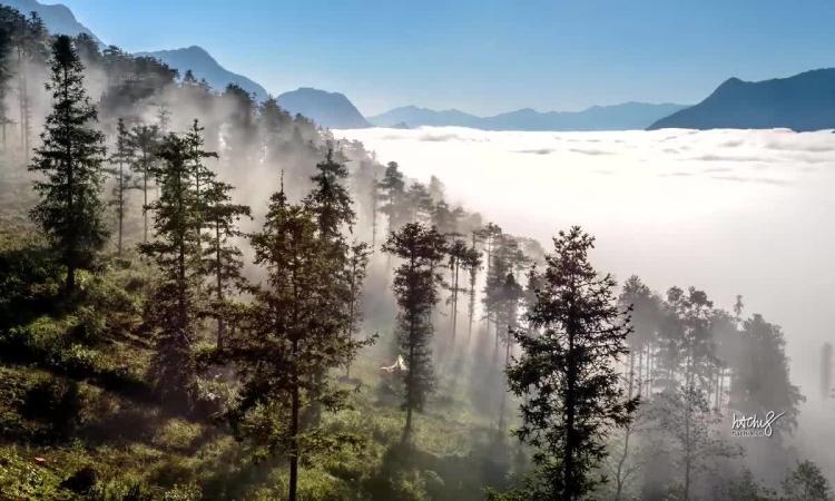 Vũ điệu mây Sa Pa