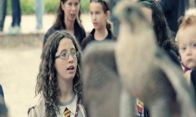 Harry Potter fan