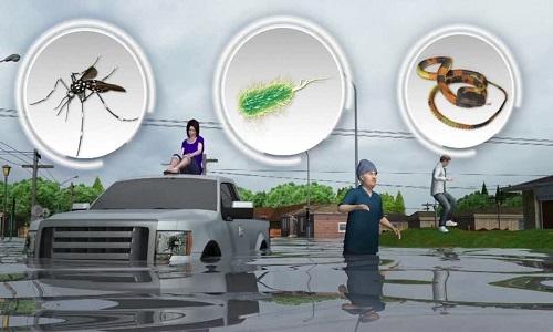 Vi khuẩn, rắn độc đe dọa người dân Houston sau ngập lụt